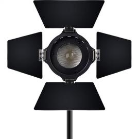 Aputure Light Storm LS-mini20c Bi-Color LED Light