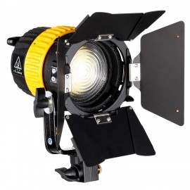 FB-800G Video LED Bulb Spotlight 80W