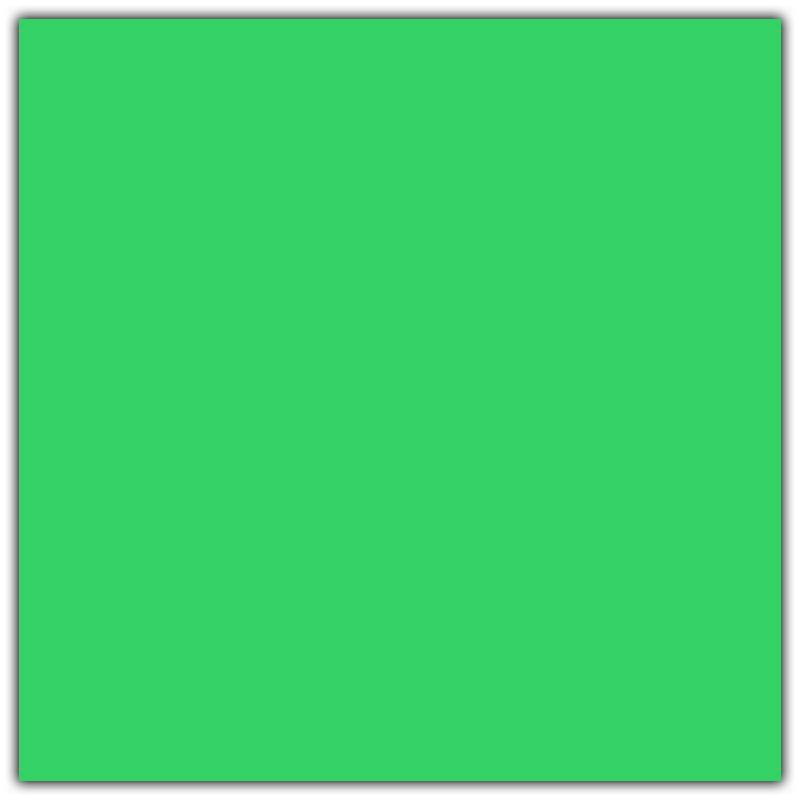 Green Seamless Backdrop