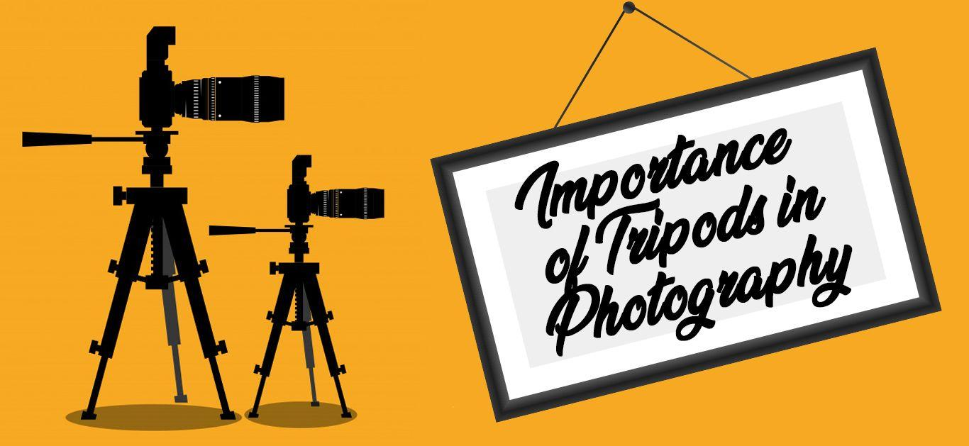 Importance of Tripods in Photography