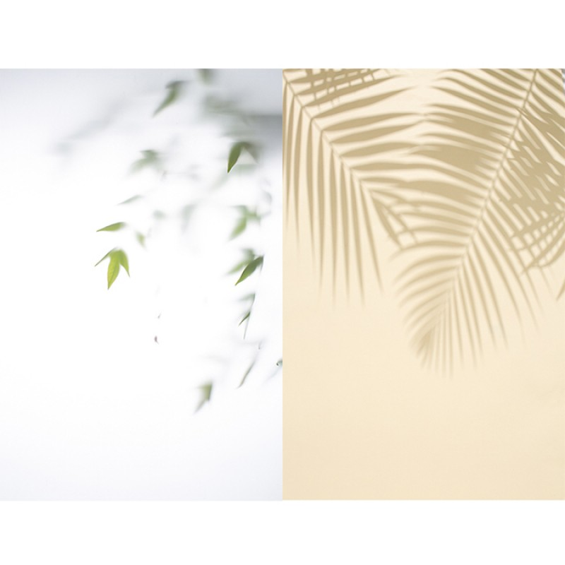 Tree shadow Double Sided Background For Product Photography